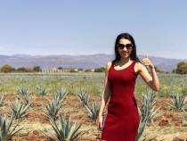 tequila tour